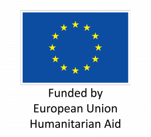 EU_Flag_HA_2016_EN-300x272