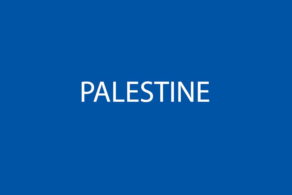 70+ INGOs condemn Israel's unlawful killing of civilians in Gaza