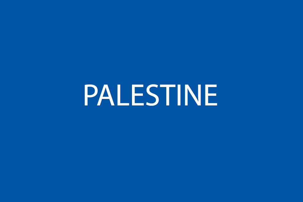 Médecins du Monde (MDM) Chapters in Palestine Statement on the excessive use of force against civilians in Gaza