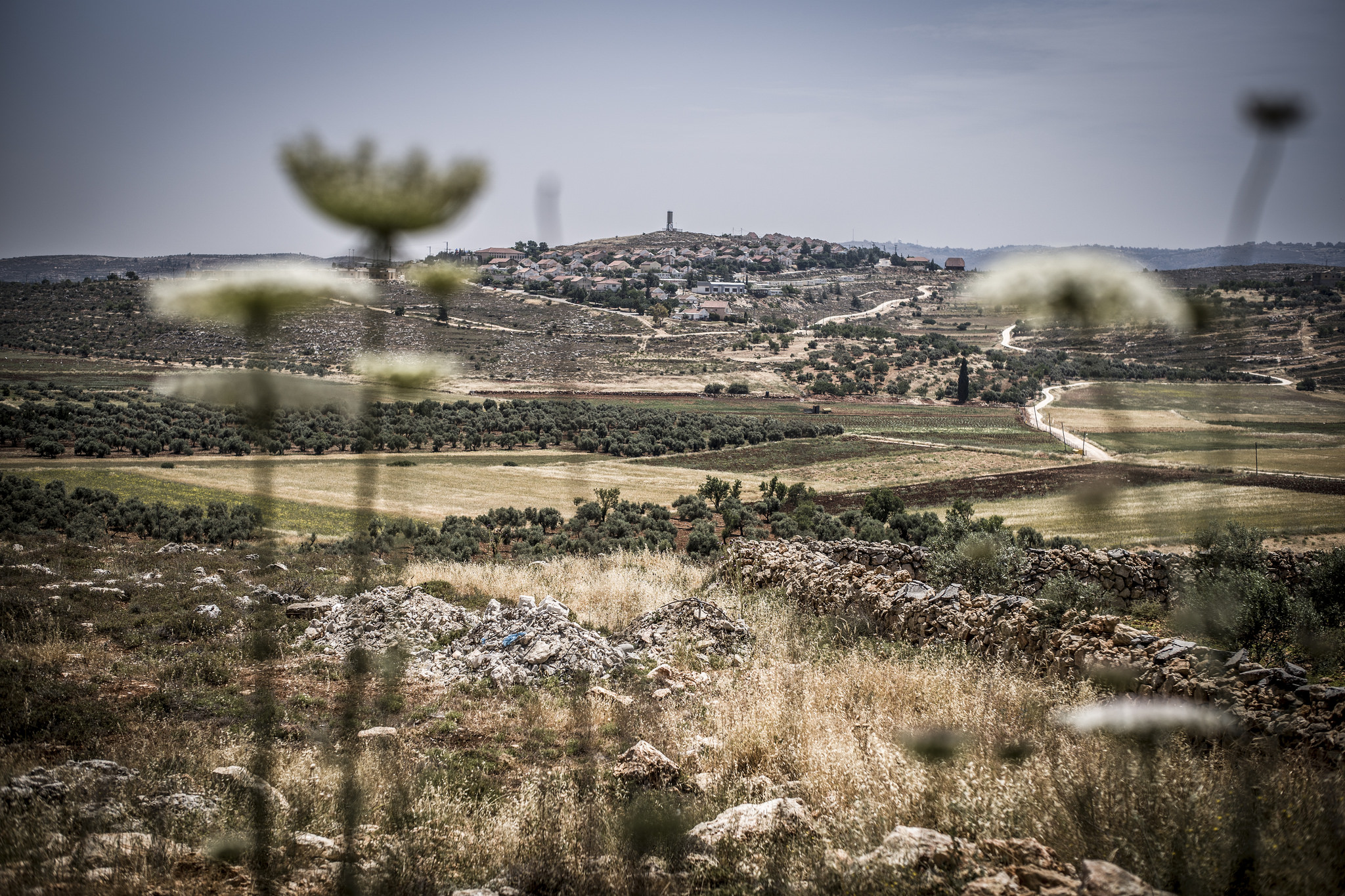 Mental health and psychosocial impacts of occupation-related violence in Palestine.